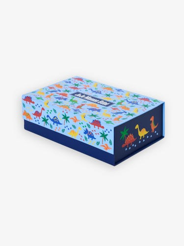 Medium Dinosaur Gift Box