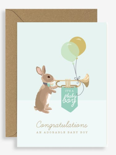 Sirocco New Baby  Congratulations Card Woodland Parade
