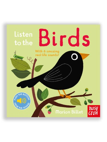 Listen to the Birds Book